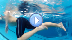 leg work - front crawl kick